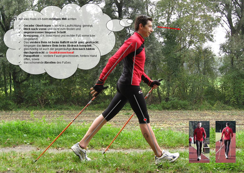 Nordic Walking-Laufstudie